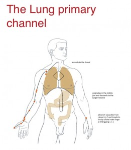 Lung Channel