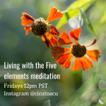Living with the five elements meditation